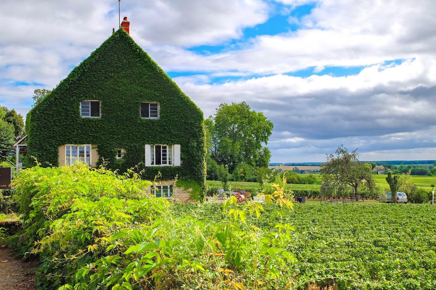 La Bourgogne à la toussaint